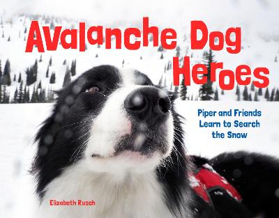Avalanche Dog Heroes: Piper and Friends Learn to Search the Snow by Elizabeth Rusch
