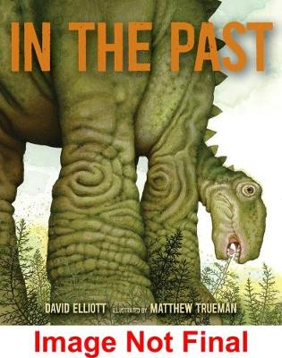 In the Past: From Trilobites to Dinosaurs to Mammoths in More Than 500 Million Years by Elliott David