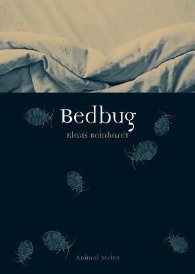 Bedbug by Klaus Reinhardt