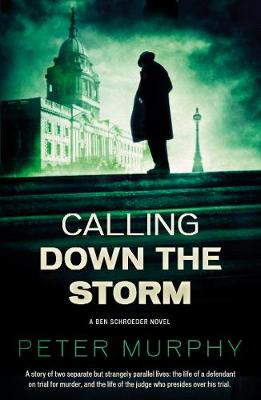 Calling Down The Storm by Peter Murphy
