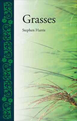 Grasses by Stephen Harris
