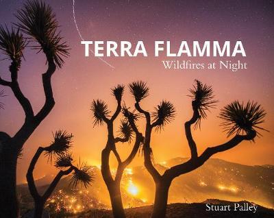 Terra Flamma: Wildfires at Night book