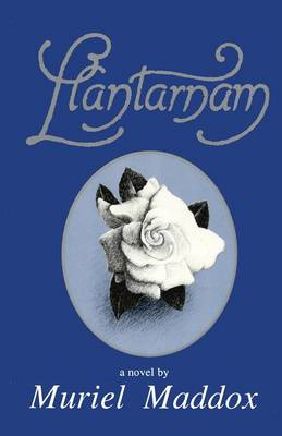 Llantarnam book