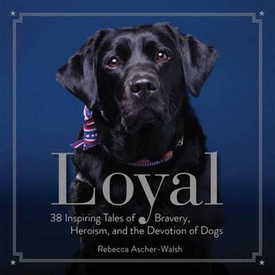 Loyal by Rebecca Ascher-Walsh