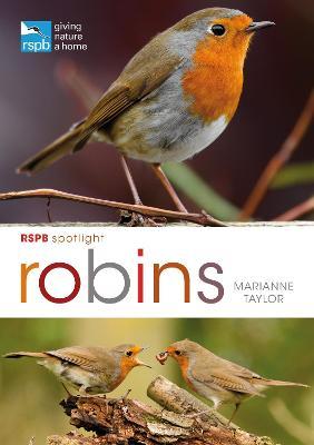 RSPB Spotlight: Robins by Marianne Taylor