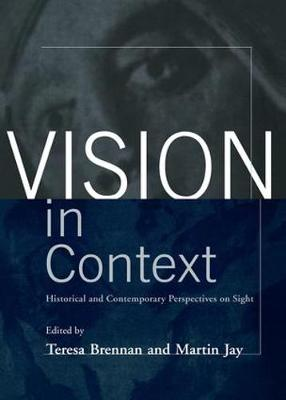 Vision in Context book