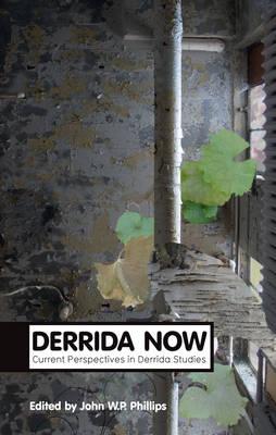 Derrida Now book