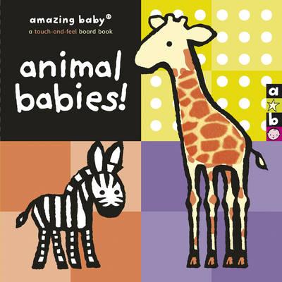Amazing Baby by Emily Hawkins