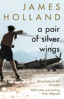 A Pair of Silver Wings book