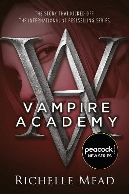 Vampire Academy book