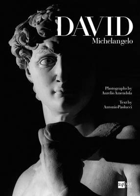 Michelangelo's David book