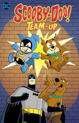 Scooby-Doo Team Up: It's Scooby Time! book