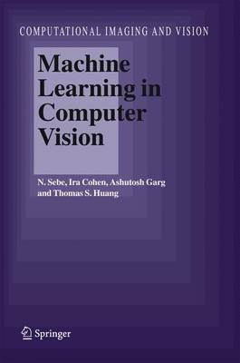 Machine Learning in Computer Vision by Nicu Sebe