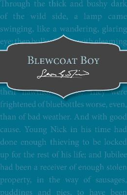 Blewcoat Boy by Leon Garfield