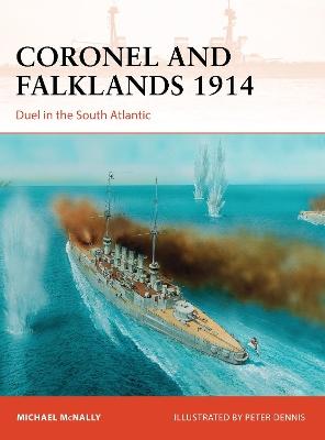 Coronel and Falklands 1914 book