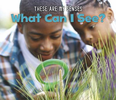 What Can I See? by Joanna Issa