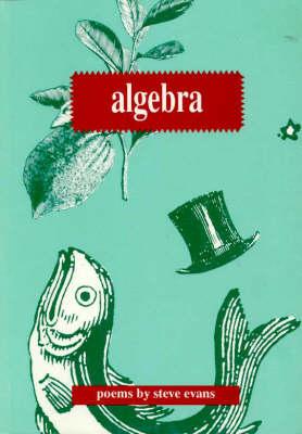 Algebra by Steve Evans