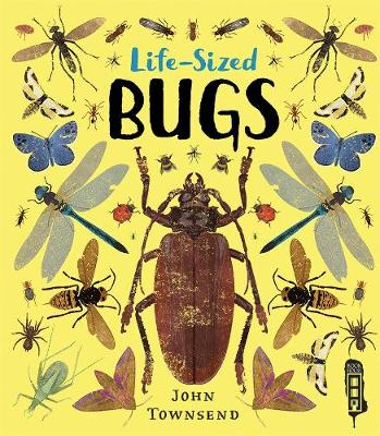 Life-Sized Bugs by John Townsend