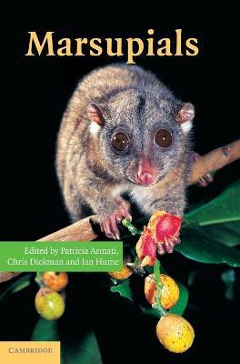 Marsupials by Patricia J. Armati
