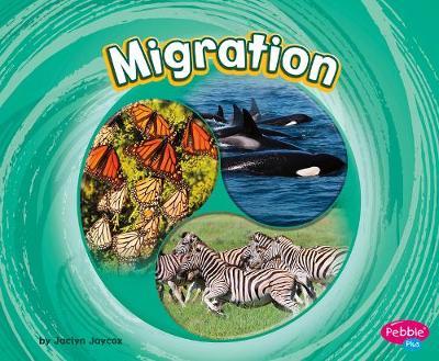 Migration by Jaclyn Jaycox