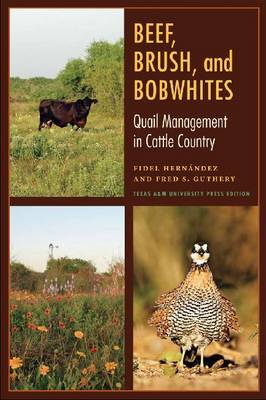 Beef, Brush, and Bobwhites by Fred S. Guthery