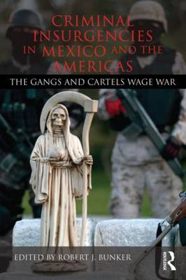 Criminal Insurgencies in Mexico and the Americas book
