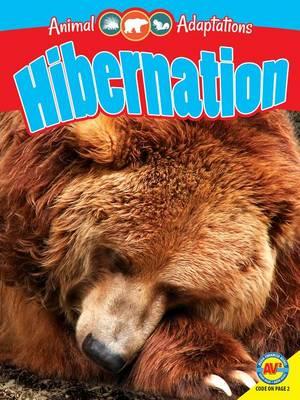 Hibernation by Pamela McDowell