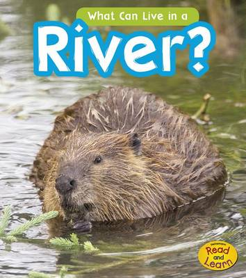 What Can Live in the River? by John-Paul Wilkins