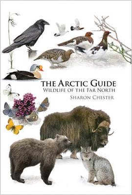 The Arctic Guide by Sharon Chester