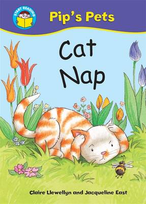 Cat Nap, My Cat Coco book