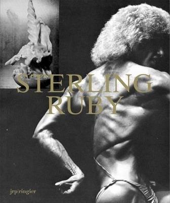 Sterling Ruby by Robert Hobbs