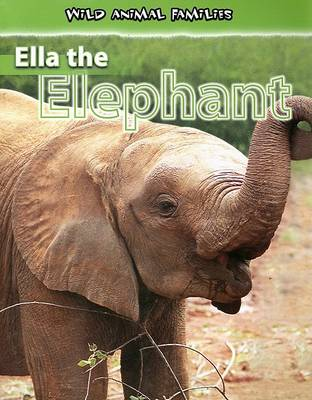 Ella the Elephant by Jan Latta