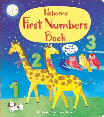 First Numbers Book book
