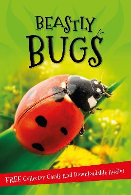 It's all about... Beastly Bugs by Kingfisher