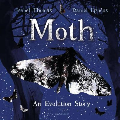 Moth by Isabel Thomas