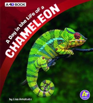 A Day in the Life of a Chameleon by Lisa J. Amstutz