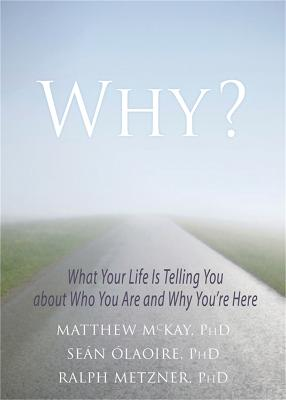 Why? by Matthew McKay