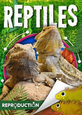 Reptiles by Joanna Brundle