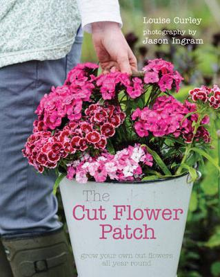 Cut Flower Patch by Louise Curley