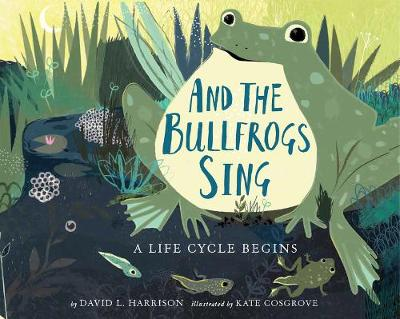 And the Bullfrogs Sing: A Life Cycle Begins by David L. Harrison