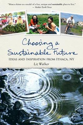 Choosing a Sustainable Future book