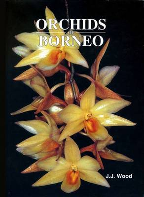 Orchids of Borneo Orchids of Borneo Volume 3 Dendrobium, Dendrochilum and Others Vol. 3 by J. J. Wood