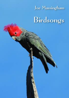 Birdsongs by Joe Massingham