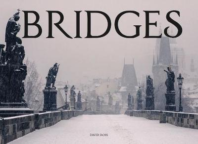 Bridges by David Ross