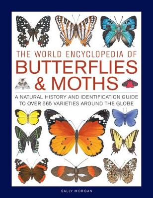 Butterflies & Moths, The World Encyclopedia of: A natural history and identification guide to over 565 varieties around the globe by Sally Morgan