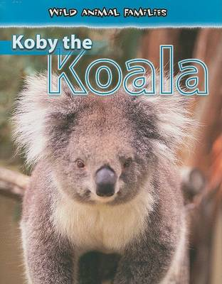 Koby the Koala by Jan Latta