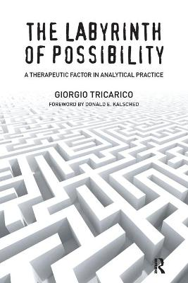 The Labyrinth of Possibility by Giorgio Tricarico