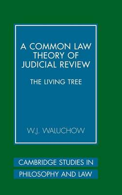 Common Law Theory of Judicial Review book