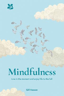 Mindfulness: Live in the Moment and Enjoy Life to the Full by Gill Hasson