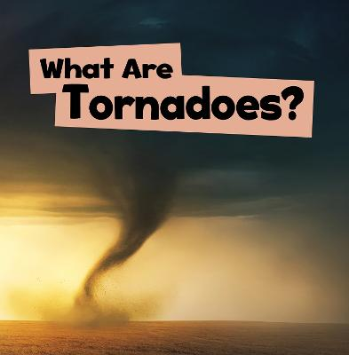 What Are Tornadoes? by Mari Schuh
